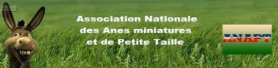 Association Nationale des Ânes miniatures et de Petite Taille