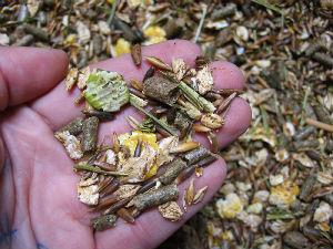 L Alimentation De L Ane Miniature Bon A Savoir Anes Miniatures