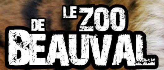 zoo de beauval ane